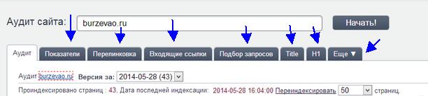 аудит сайта онлайн бесплатно мегаиндекс