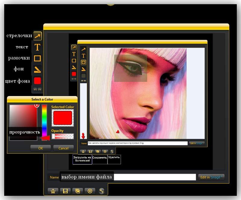 как-сделать-снимок-экрана-монитора-Jing-Preview