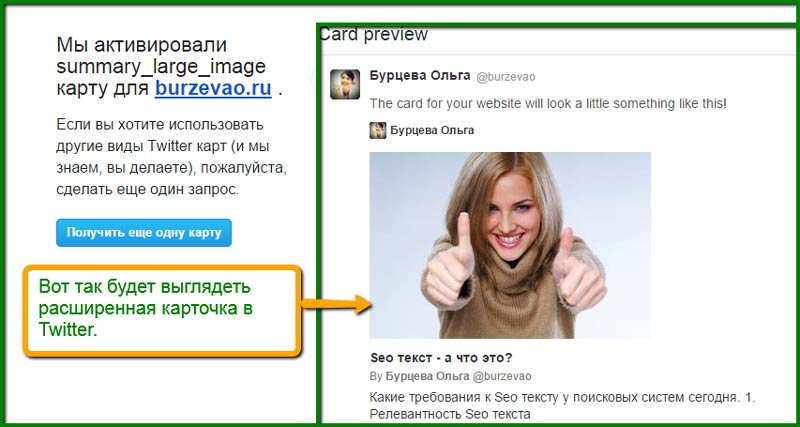 Seo_plagiv_dla_WordPress__карточка_в_Twitter
